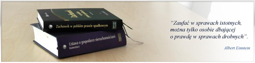 Baner książki